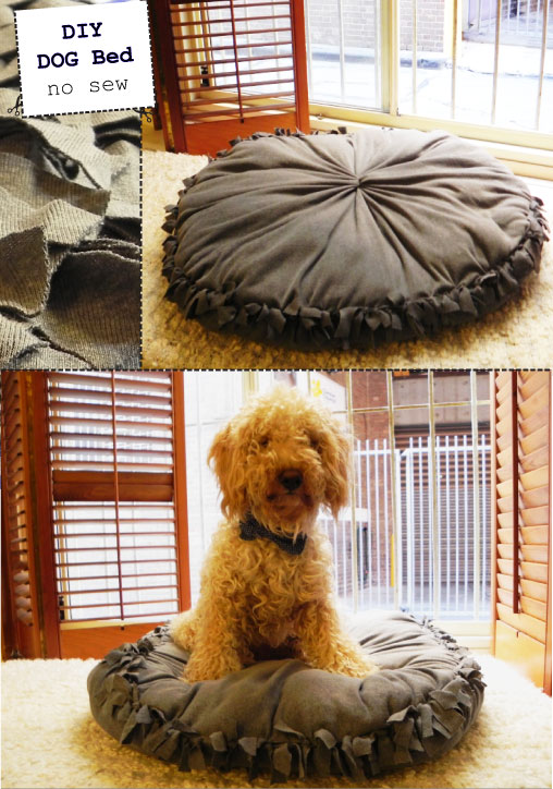No Sew DIY Dog Bed